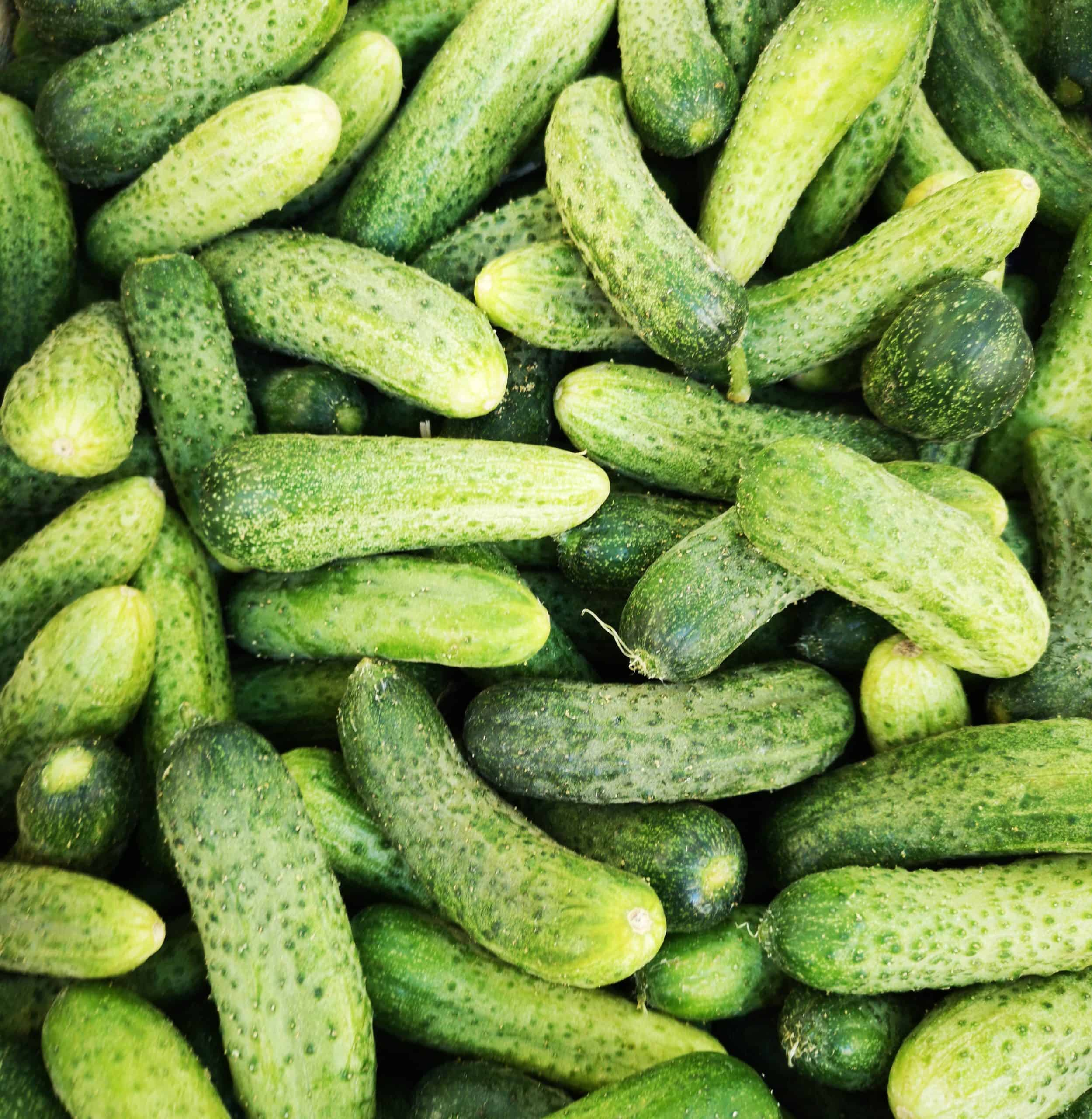 Health Benefits That You Can Get Of Cucumber
