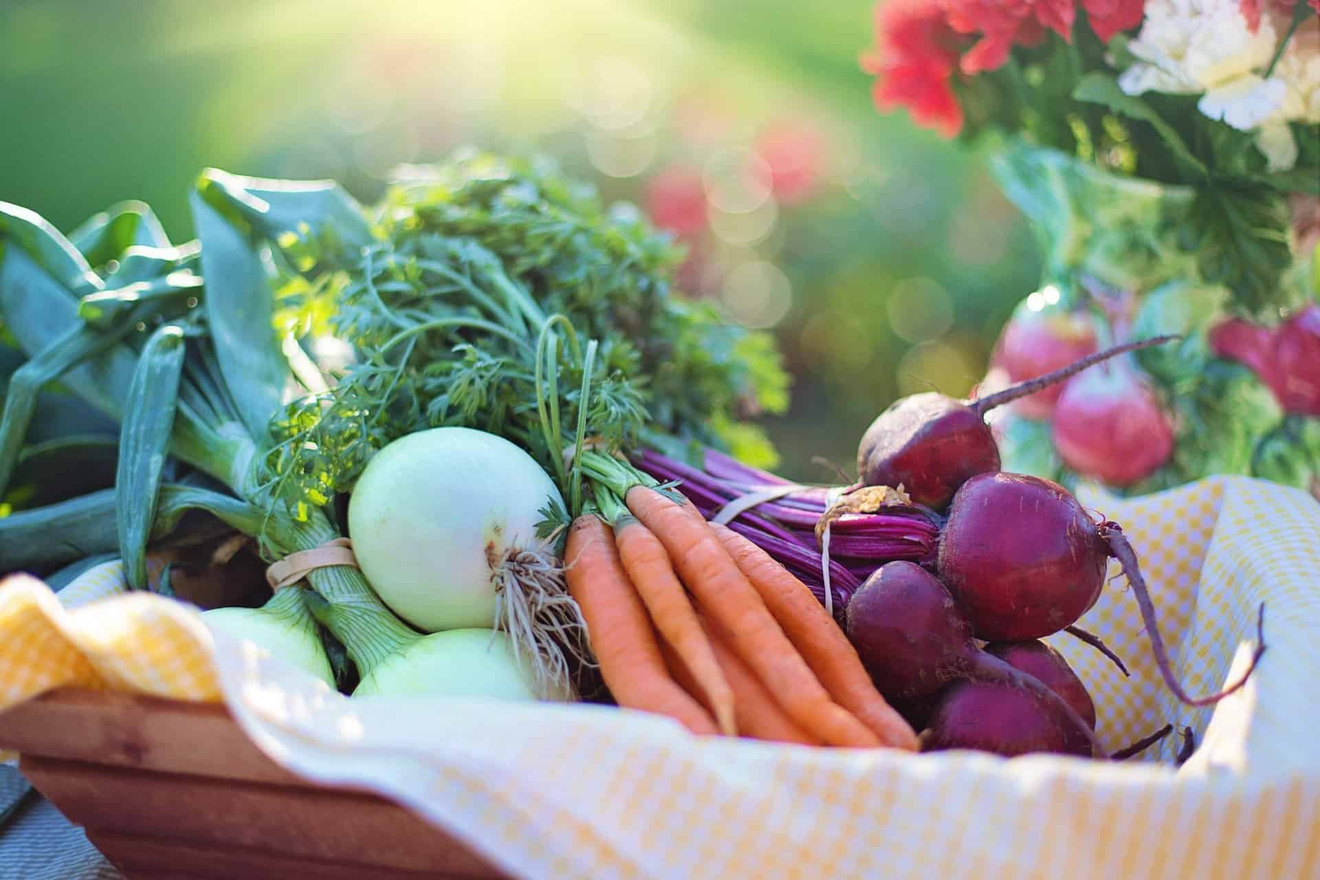 The Natural Fertility Diet For Optimal Fertility